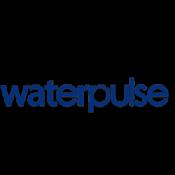 Ирригаторы Waterpulse (6)
